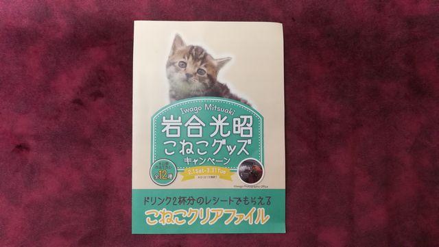 シャノアール「こねこグッズ」キャンペーン☆子猫がとってもキュートなクリアファイル
